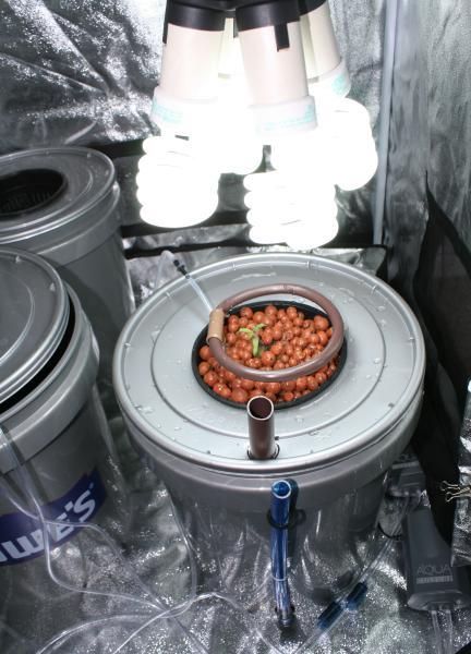 Diy General Hydroponics Drip System Inventgeek